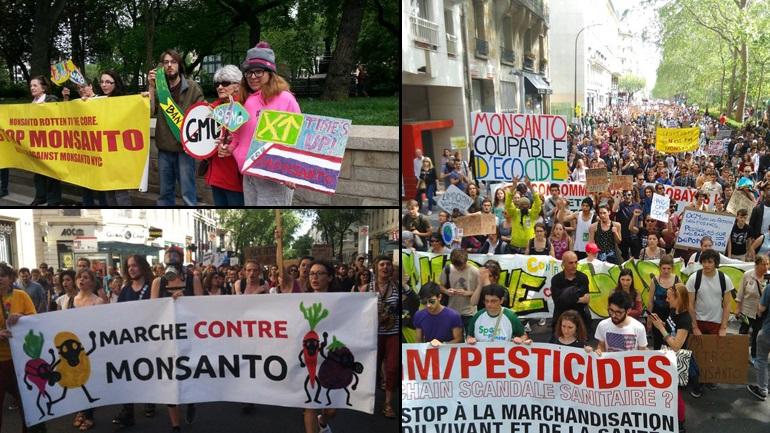 Ενωμένοι εναντίον της Monsanto