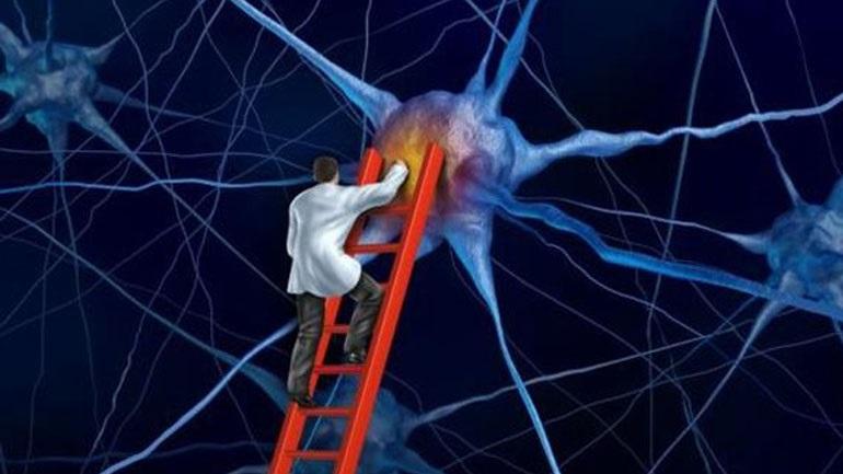 Ερευνητές στα Ιωάννινα ανακάλυψαν ουσία κατά της νόσου Πάρκινσον