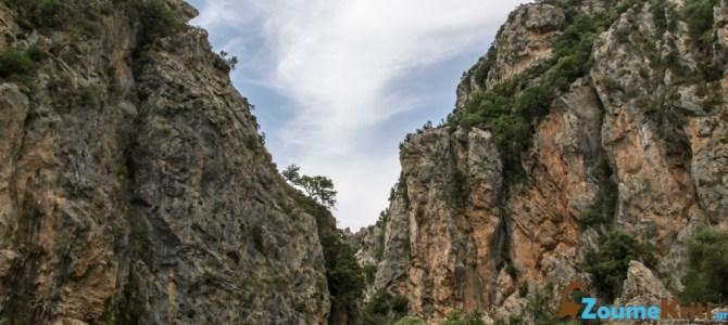 Φαράγγι Αγίου Αντωνίου (Πατσός)