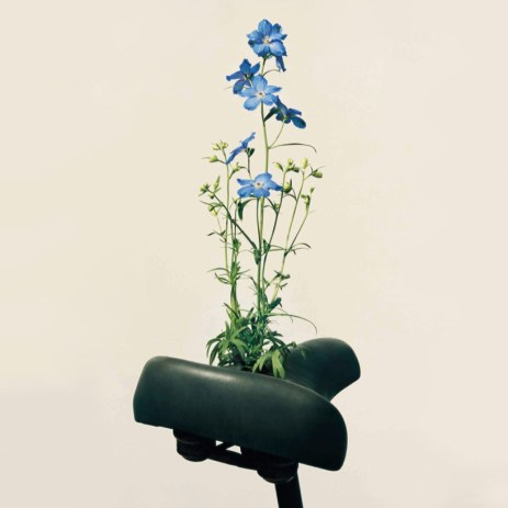 saddle-blossoms-designboom-01
