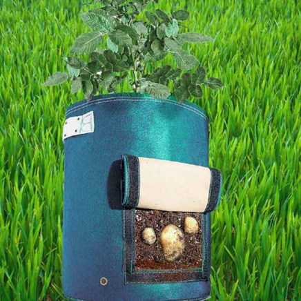 potato-planter-with-flap-6542