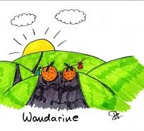 Wandarine