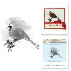 Штампи Cardinal, Spellbinders, DSC-003