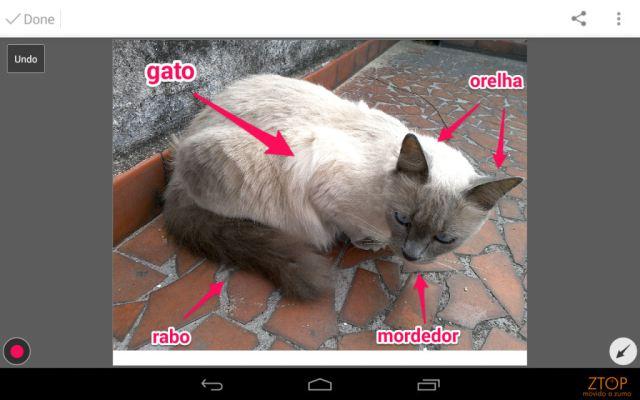 Dell_Venue_7a_App_camera_skitch