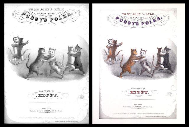 pussy_polka