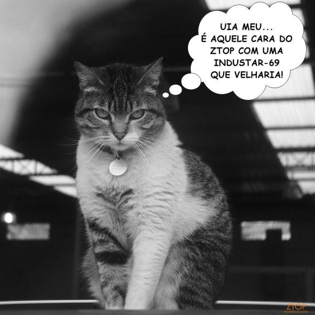 industar-69-gatonovela_1_leg