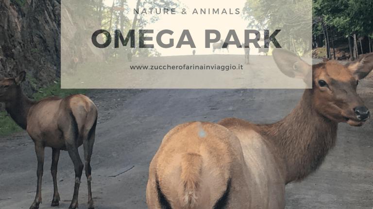 Omega park: tra cervi, lupi e orsi