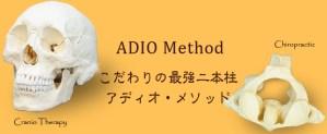 ADIO Method/こだわりの最強二本柱 アディオ メソッド