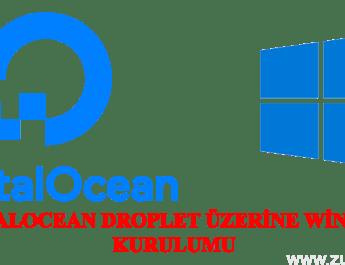DigitalOcean'a Windows Kurulumu