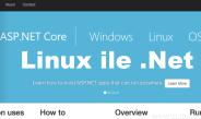 Linux İle .NET Çalıştırmak