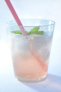 Refreshingly Icy Peach Prosecco Spritzer