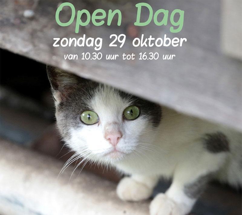 nieuws Open Dag 2017