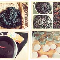 uhudler-marmelade von gastprinzessin eva