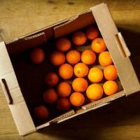 purée ze skórek pomarańczy { po wyciskaniu soku } • no waste •