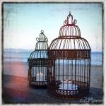 z widokiem na stół | zapiski podróżne Elba | kawa z widokiem
