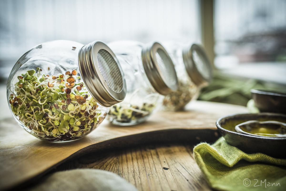 z widokiem na stół | kiełki z własnej uprawy