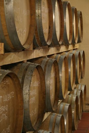 Chianti wine casks