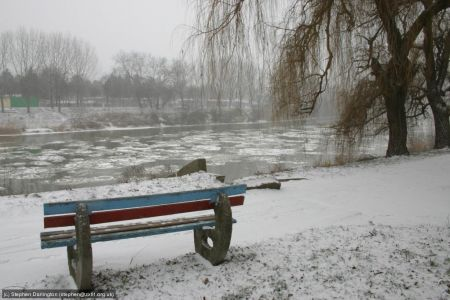 By the river in Arad