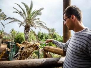 Zoo Fuertaventura