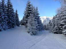 Zima w Horni Misecky