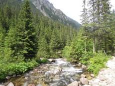 Dolina Roztoki Tatry