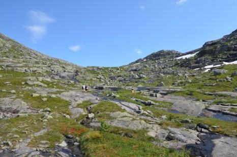 Droga płaskowyżem Hardangervidda na Trolltunga Norwegia