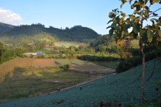 Chiang Mai trekking wioska Lahu Tajlandia