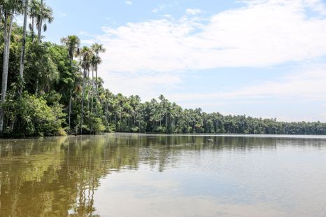 Jezioro Sandoval Peru