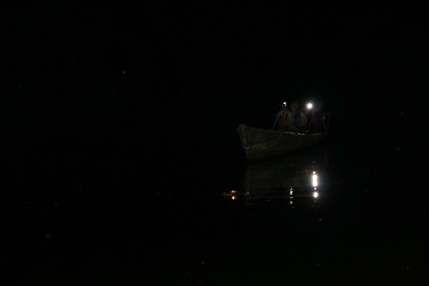 Kajman jezioro Sandoval 2 Peru