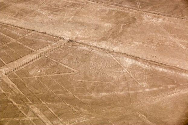 Pająk i figury geometryczne linie Nazca Peru