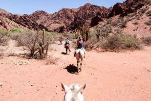Wycieczka konna w Tupizie 4 Boliwia