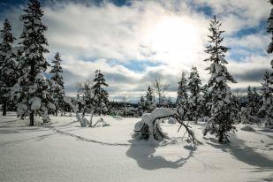 Krajobrazy Saariselkä Finlandia