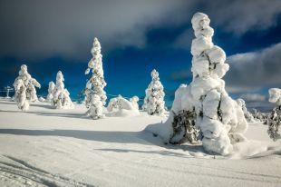 Krajobrazy Saariselkä 2 Finlandia