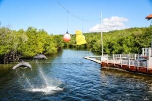 Delfinarium Cienfuegos Kuba