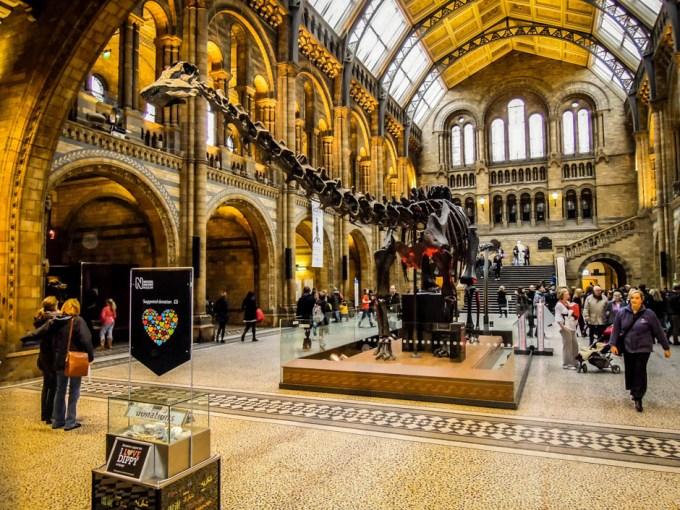 Muzeum Historii Naturalnej dinozaur Londyn