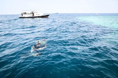 Malediwy nurkowanie wrak