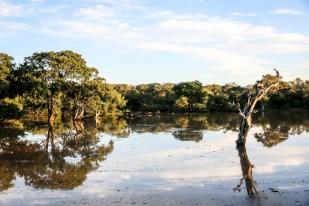 Park Narodowy Yala 3