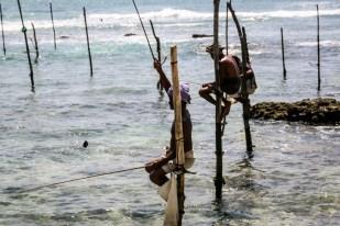 Rybacy na palach Sri Lanka