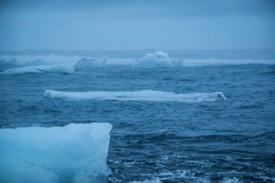 Islandia laguna Jokulsaron kry