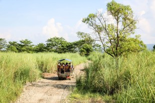 Nepal Chitwan safari autem