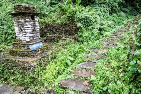 Nepal trekking do ABC droga do Chhomrong