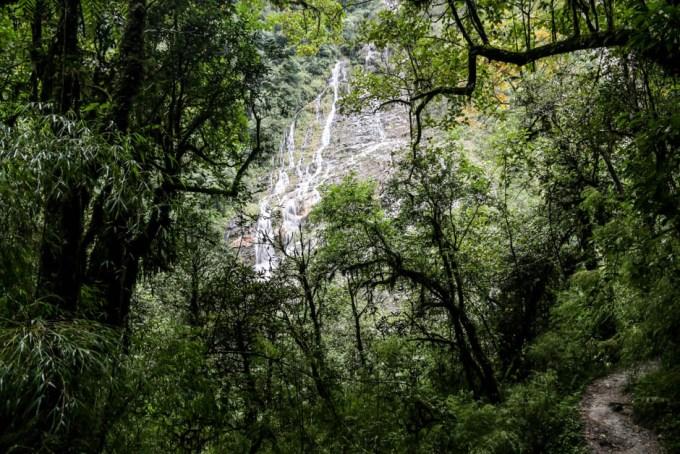 Nepal trekking do ABC las i wodospad