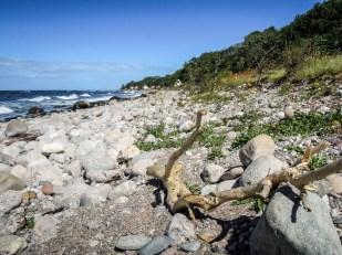 Bornholm kamienista plaża