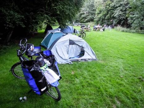 Bornholm pole namiotowe w lesie