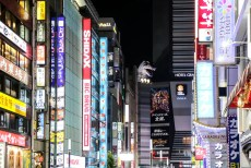 Shinjuku Kabuchiko Godzilla