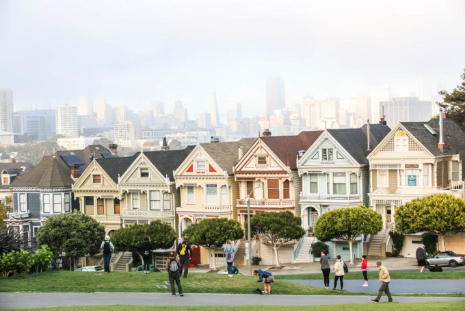 San Fransisco Painted Ladies