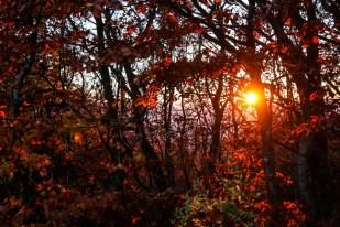 Bieszczady zachód słońca