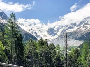 Widok na Piz Bernina