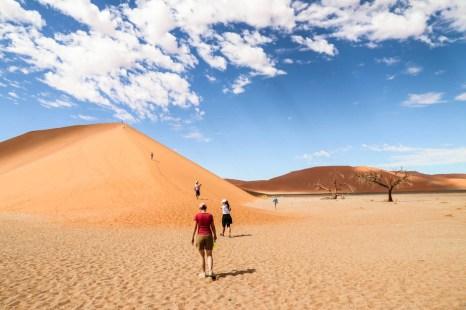 Dune 45 na pustyni Namib