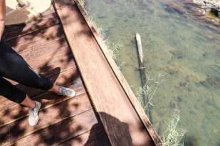 Kemping Epupa Falls krokodyl